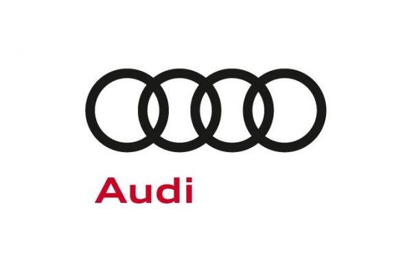 ARISTO Reference Audi
